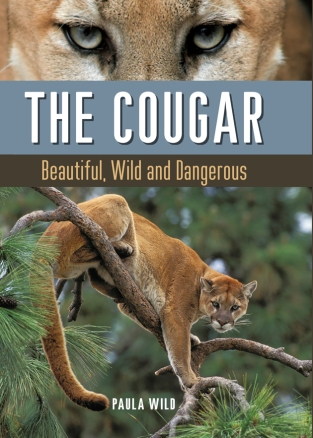 CougarCovermain